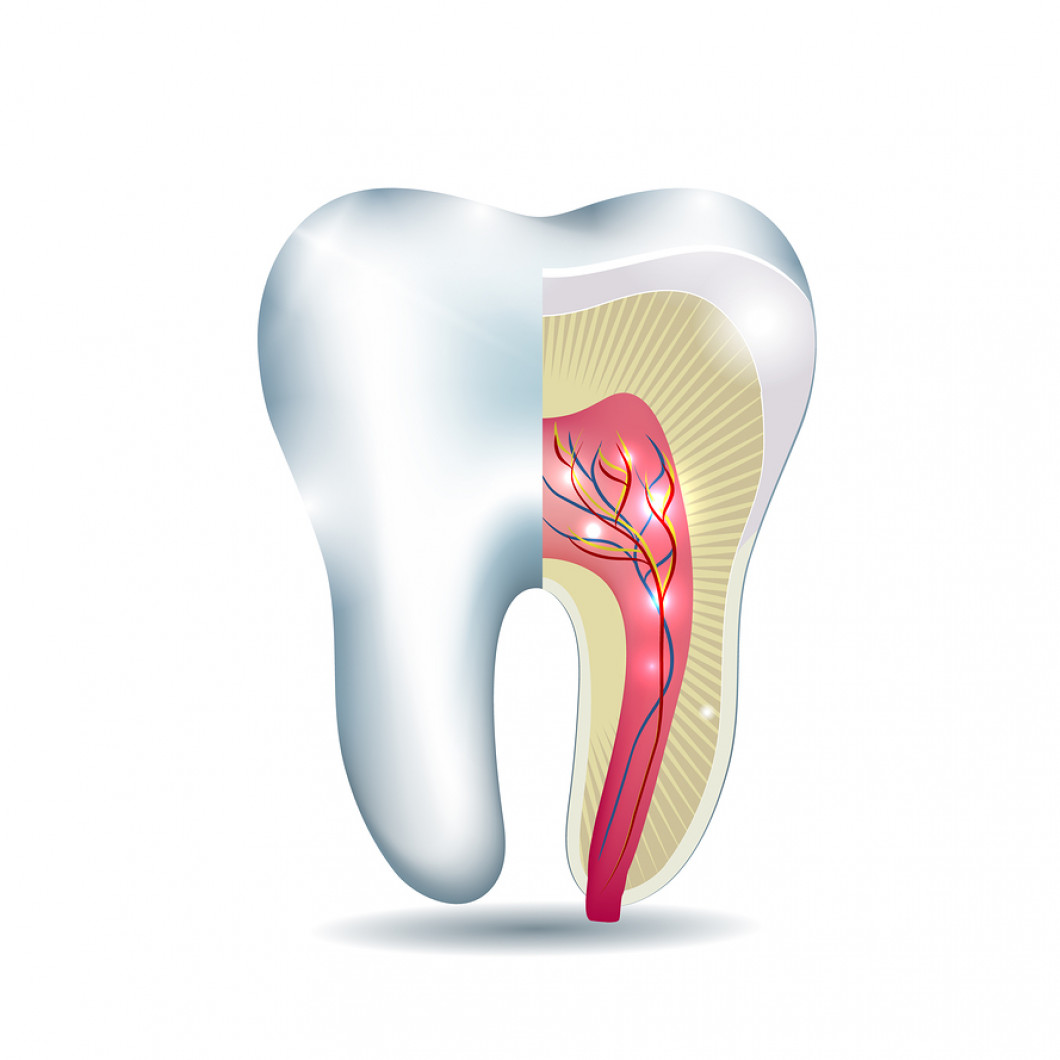 Root Canal Therapy in Toms River, NJ